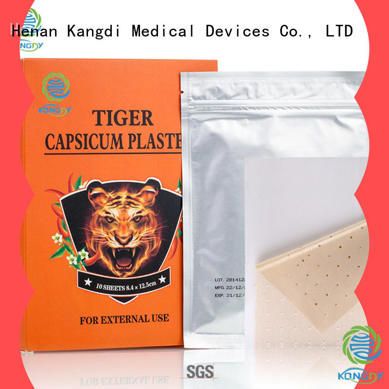 Best capsicum patch Supply Healthy body
